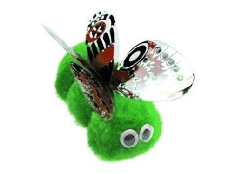 Winnie vlinder