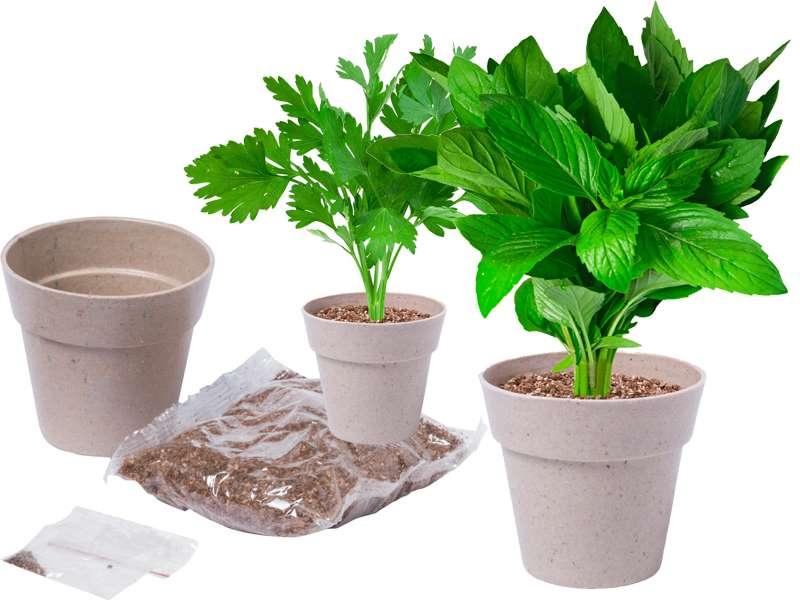 Kruidenpot met twee biologisch afbreekbare potten,