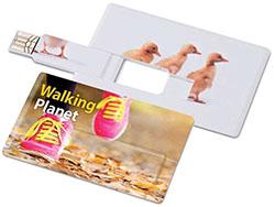 Usb-stick in creditcard formaat 4gb